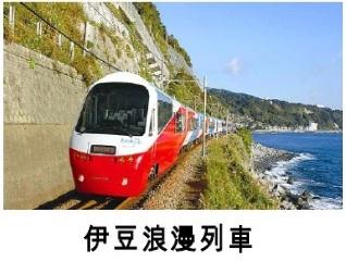 2019領隊協會研習團-大井川鐵道伊豆6日